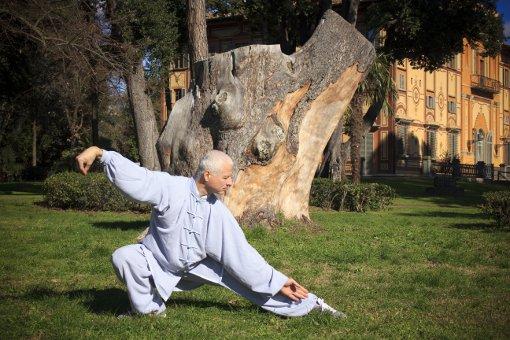 Tai Chi Chuan stile Yang - Forma a mani nude 103 movimenti: Forma bassa